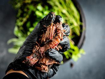 Pulled Beef Gordita